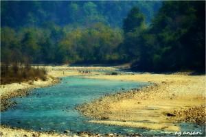 Blue Ramnagar Forest Division Corbett Tiger Reserve